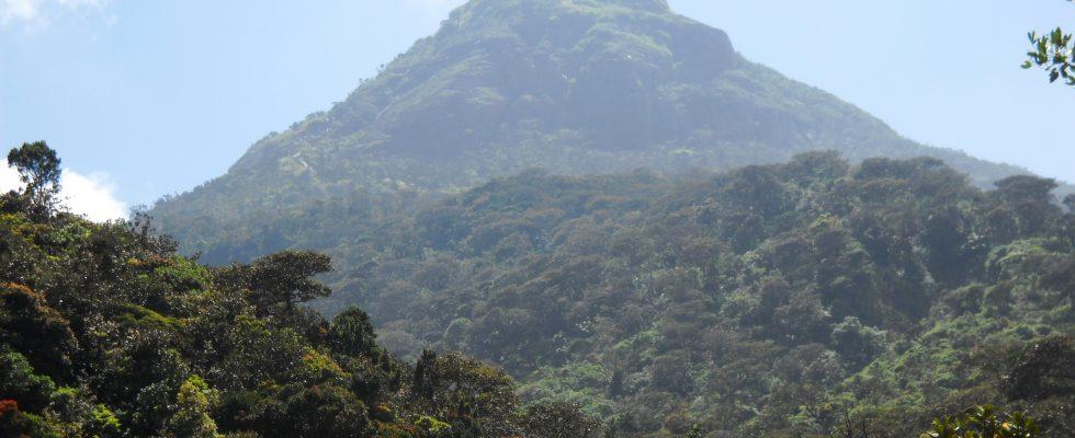 Samanala kanda (Adams peak)