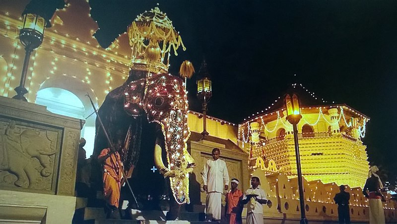Esala Perehara in Kandy – One of the Most Majestic Processions in South East Asia!