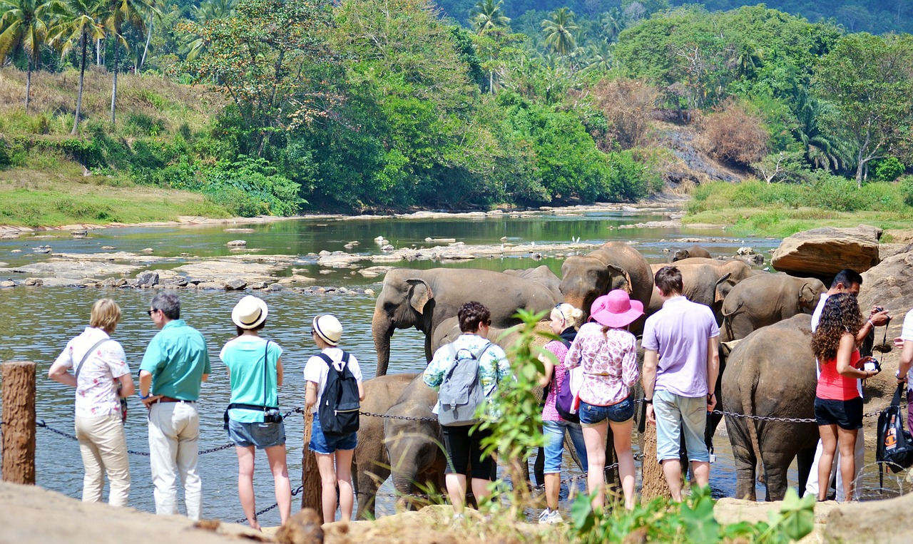 Sri Lanka Eyes Increase in High Spending Tourists from India