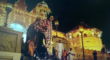 Kandy Perahera August 2020 – A Celebration as Old as Time