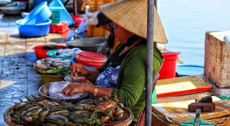 Tan Thanh Fishing Village Market Opened in Hoi An