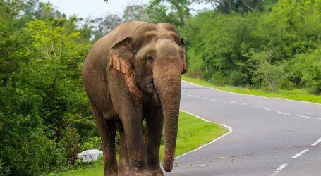 Sri Lanka Added to UK's Travel Corridor List