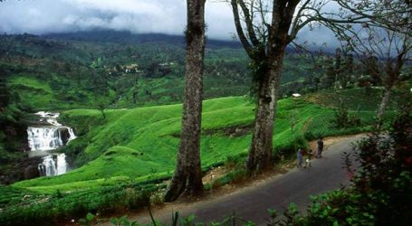 Sri Lanka plans to let vaccinated tourists join the community – Tourism sees a pickup