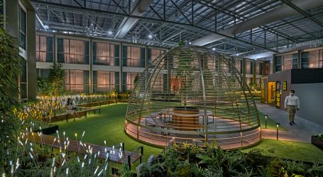 Connect@Changi Sees Popularity Grow – Travel Bubble Facility Expanded