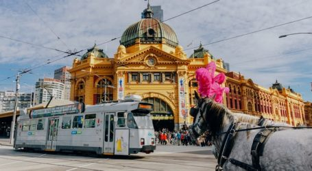 It's going to be 'wow' in Melbourne in August – Let the joy begin!